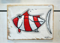 Petit poisson rouge et blanc